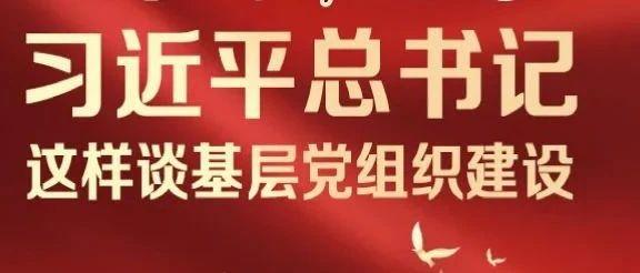 一图带你了解:习近平总书记这样谈基层党组织建设