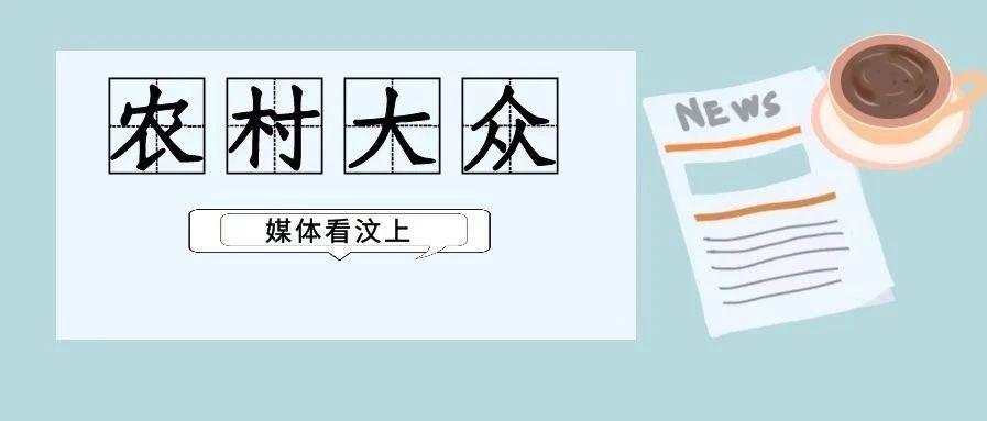 农村大众头版头条   2月18日刊发 汶上县:两亿株薯苗卖全国,春节剪苗不停歇