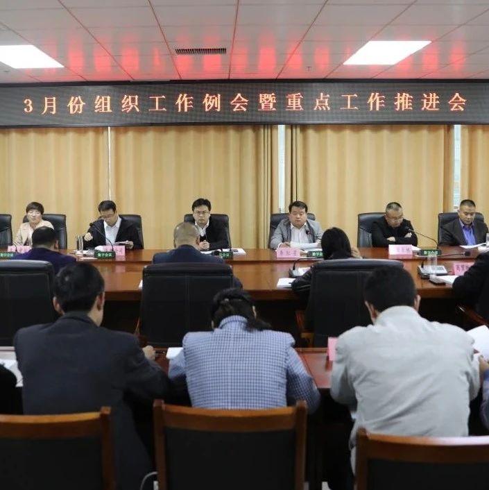 我县召开3月份组织工作例会暨重点工作推进会
